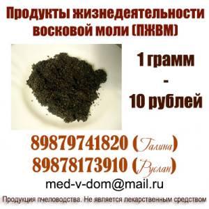 pjvm-voskovaya-mol
